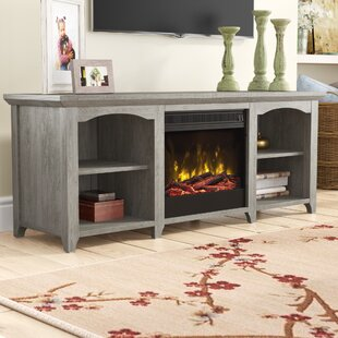 Guide to buy Danforth TV Stand for TVs up to 60 with Fireplace by August Grove Reviews (2019) & Buyer's Guide