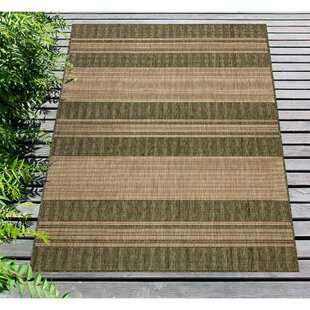 Desantiago Stripe Green/Brown Indoor/Outdoor Area Rug
