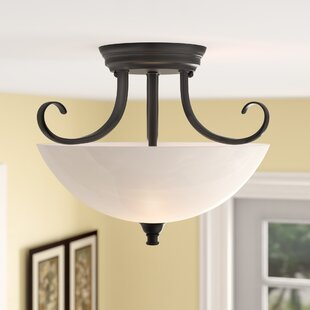Eichelberger 2-Light Semi-Flush Mount by Charlton Home