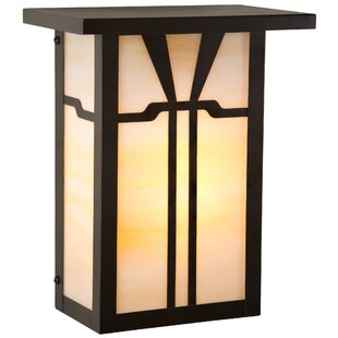 Elginpark Outdoor Flush Mount by Loon Peak