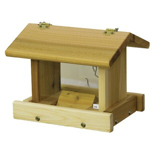 Stovall Hanging Hopper Bird Feeder with Chain