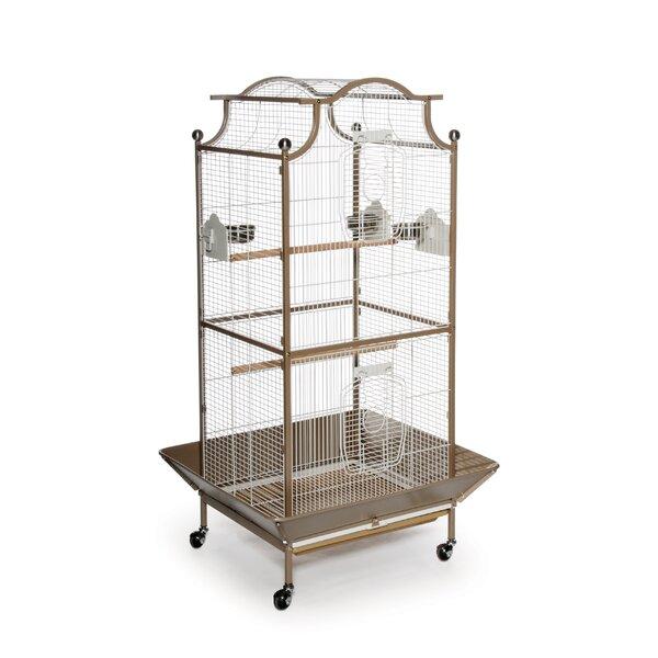 Pagoda Bird Cage Wayfair