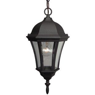 Charlton Home Oswego 1-Light Outdoor Pendant