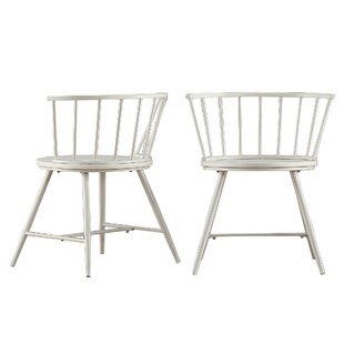 Laurel Foundry Modern Farmhouse Athis Dining Chair (Set of 2)