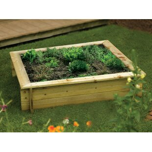 120cm X 120cm Wooden Raised Flower Bed By Freeport Park