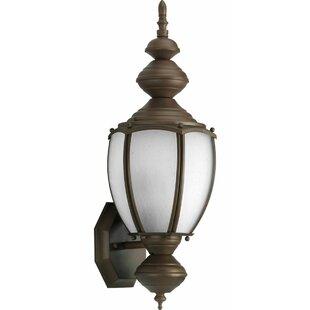 Best Choices Triplehorn 1-Light Outdoor Aluminum Sconce By Alcott Hill