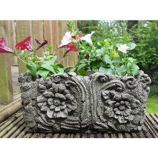 Dylan Garden Plant Pot By Lily Manor