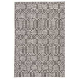 Calcutta Jaipur Living Geometric Gray/Black Indoor/Outdoor Area Rug