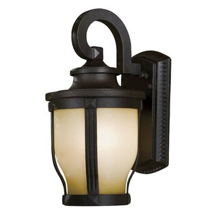 Merrimack Energy Star Outdoor Wall Mount in Corona Bronze
