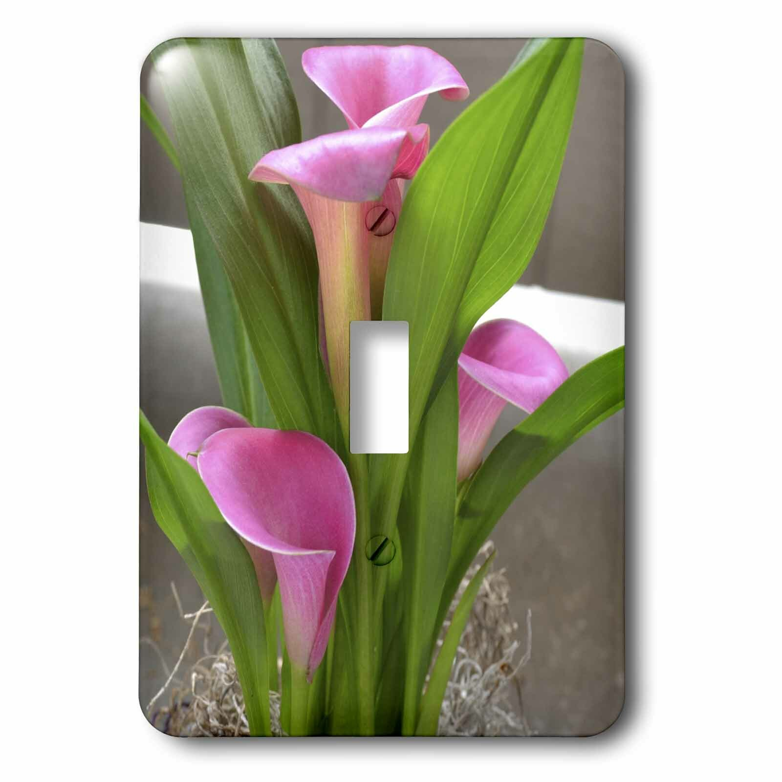 3drose Pretty Calla Lily Flowers 1 Gang Toggle Light Switch Wall Plate Wayfair