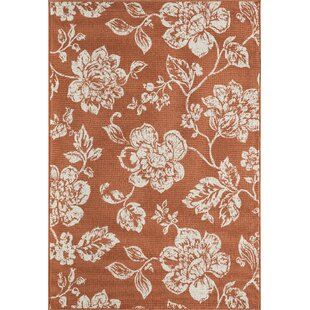 Kofi Orange/White Indoor/Outdoor Area Rug