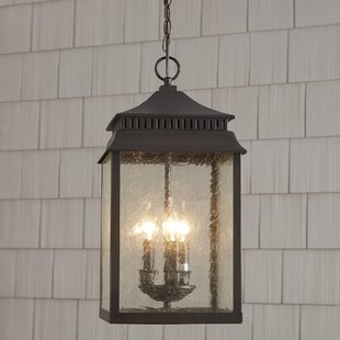 Affordable Briarfield Outdoor Hanging Lantern By Birch Lane™