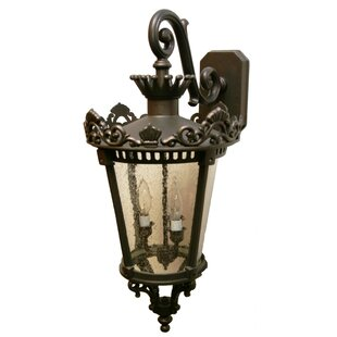 Alcott Hill Phillipstown 3-Light Outdoor Wall Lantern