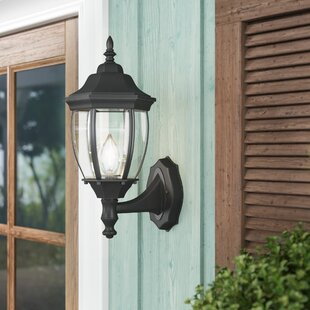 Twigg Outdoor Wall Lantern