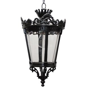 Pierron 1-Light Outdoor Hanging Lantern by Alcott Hill