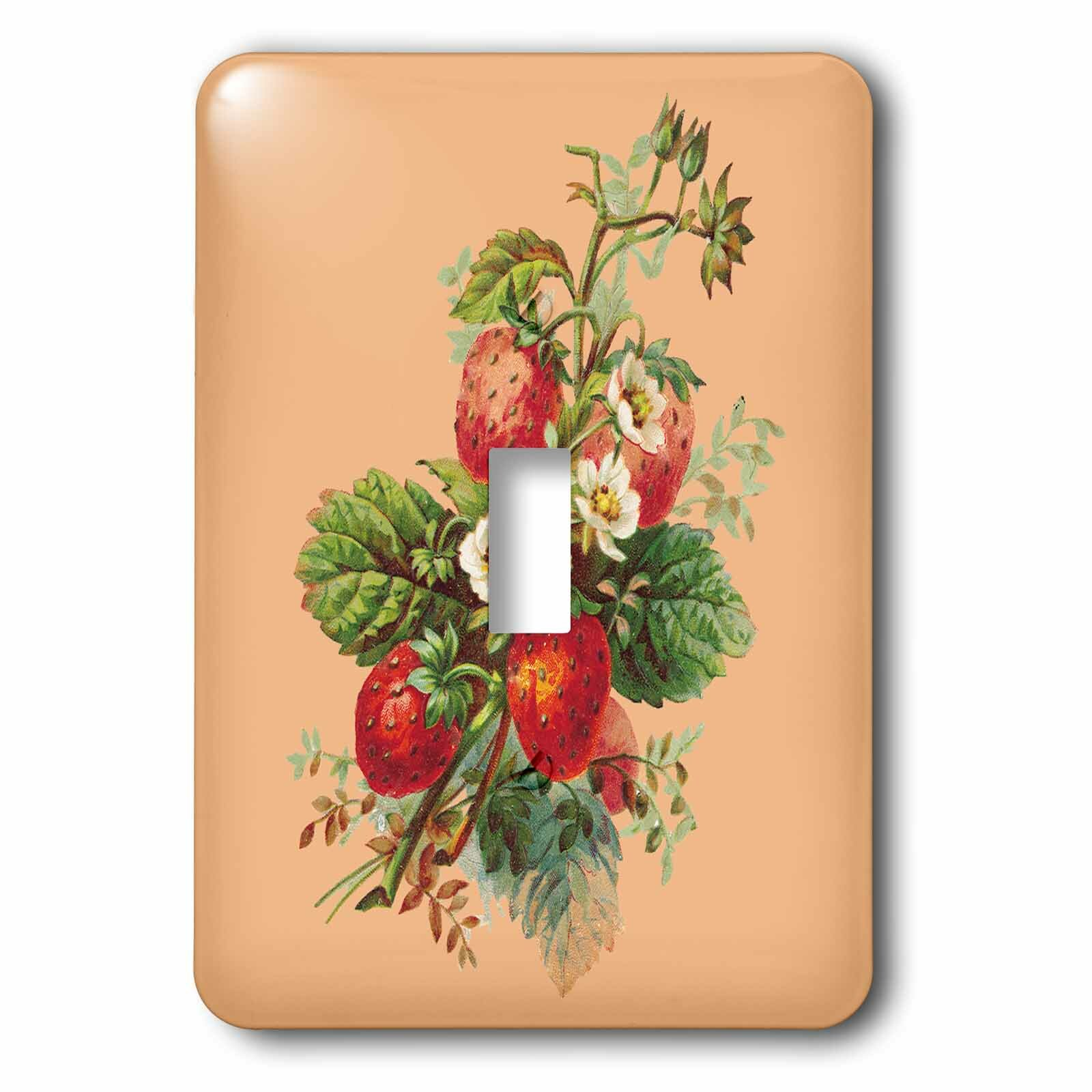 3drose Strawberry Plant With Fruits And Flowers 1 Gang Toggle Light Switch Wall Plate Wayfair