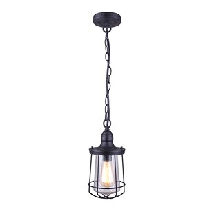 Eugena 1-Light Outdoor Hanging Lantern