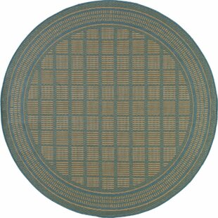 Cazares Blue Indoor/Outdoor Area Rug