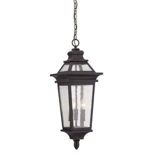 Alfaro 3 Light Outdoor Hanging Lantern Image