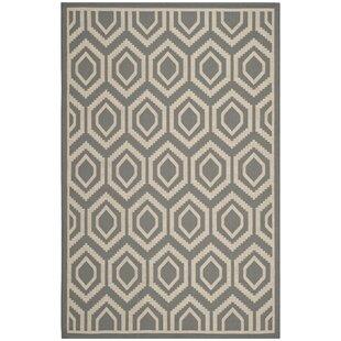 Review Doerr Grey/Ivory Indoor/Outdoor Area Rug