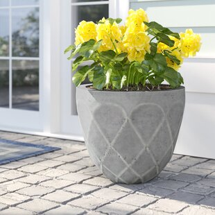 Areli Composite Pot Planter By Sol 72 Outdoor