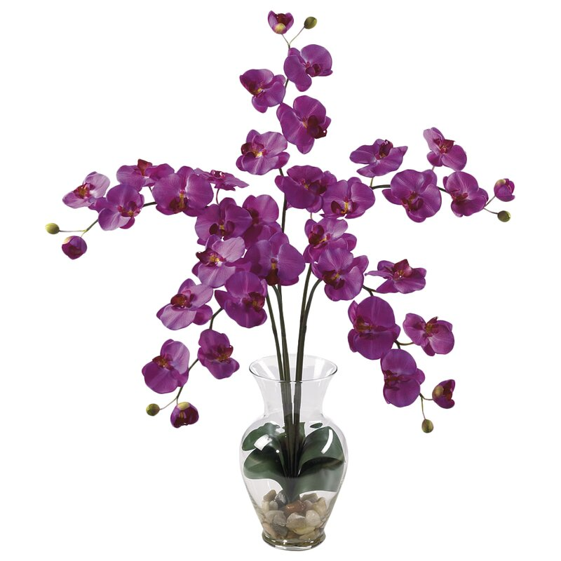 Nearly Natural Liquid Illusion Phalaenopsis Orchid With Vase