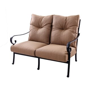 Carlitos Deep Seating Metal Frame Loveseat by Darby Home Co