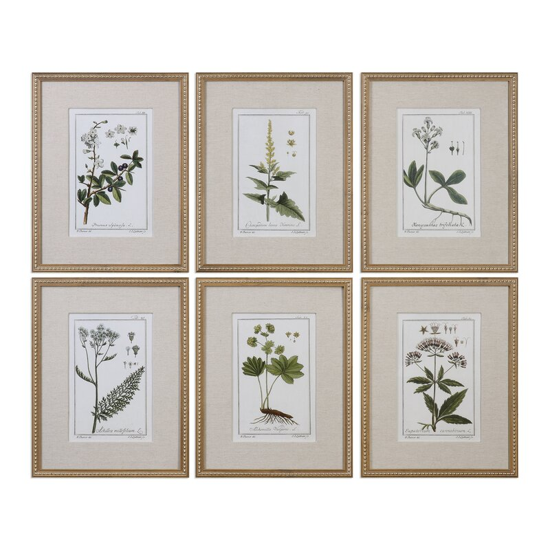 Beautifully hand embellished botanical prints for a French country interior