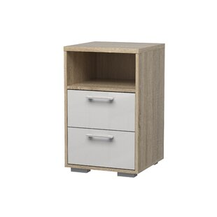 Jumaane 2 Drawer Nightstand by Orren Ellis
