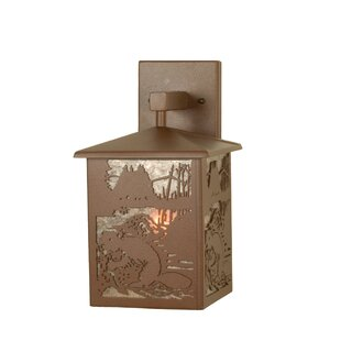 Best Choices 1-Light Outdoor Wall Lantern By Meyda Tiffany