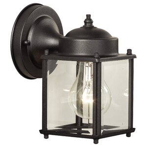 Steward 1-Light Outdoor Wall Lantern