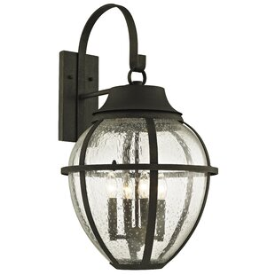 Affordable Price Diallo 4-Light Outdoor Wall Lantern By Darby Home Co