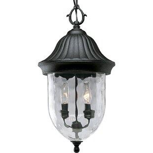 Alcott Hill Triplehorn 2-Light Hanging Lantern