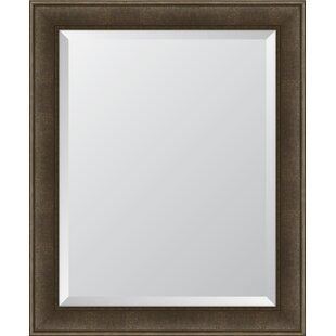 Melissa Van Hise Charcoal Resin Frame Wall Mirror