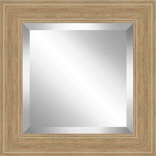 Ashton Wall Decor LLC English Effect Plate Accent Mirror