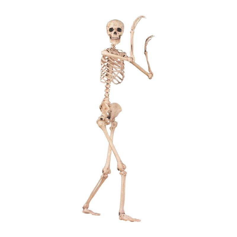 Pose n' Stay Skeleton