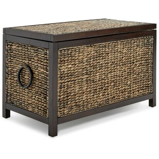 Enjoyable Sean Storage Trunk Evergreenethics Interior Chair Design Evergreenethicsorg