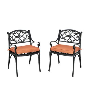 Six Patio Dining Chair with Cushion (Set of 2)