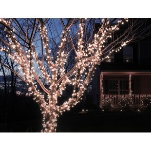 The Holiday Aisle Liteup 100 Solar String Lights
