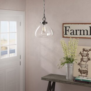Laurel Foundry Modern Farmhouse Lakeshore 1-Light Schoolhouse Pendant