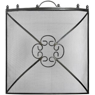 Frasier Single Panel Steel Fireplace Screen By ClassicLiving
