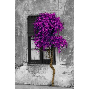 'Tree in Front of Window' Graphic Art Print