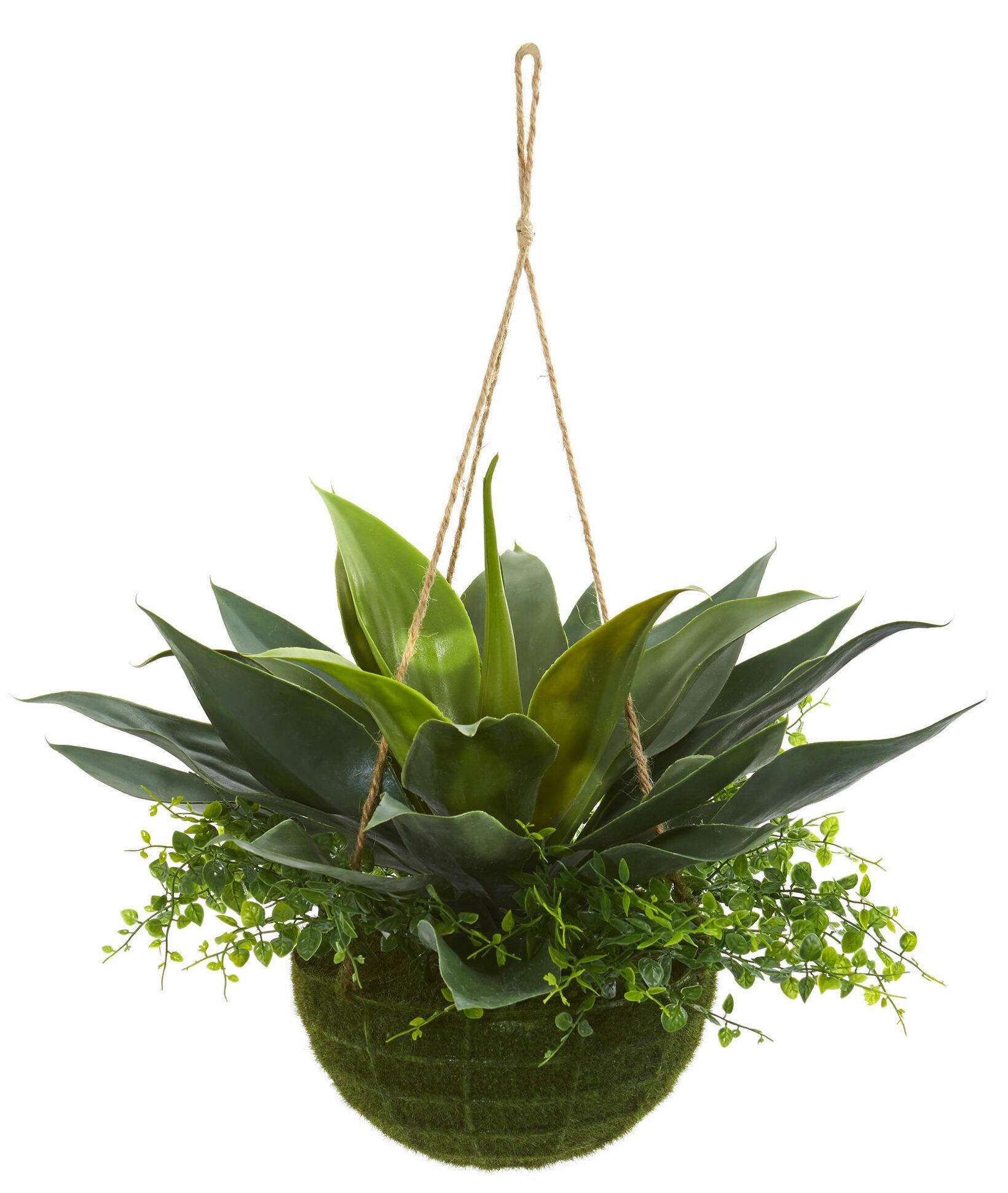 Charlton Home 13 Artificial Foliage Plant In Basket Reviews Wayfair