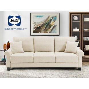 Bargain Thompson Sofa Bed by Sealy Sofa Convertibles Reviews (2019) & Buyer's Guide