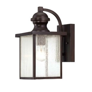 Anguiano Outdoor Wall Lantern