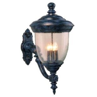 Affordable Price Phillipstown 3-Light Outdoor Sconce By Alcott Hill