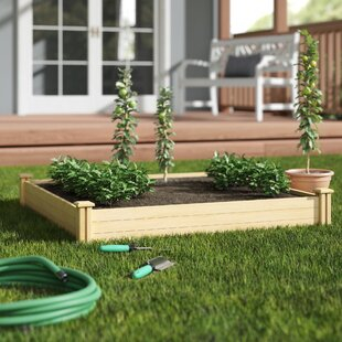 Hos Cedar Raised Garden