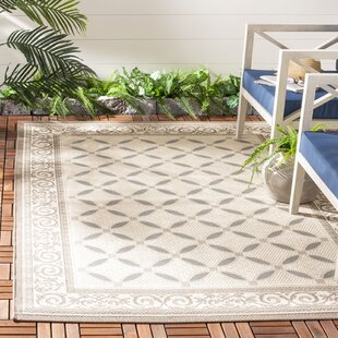 Beasley Beige Indoor/Outdoor Area Rug