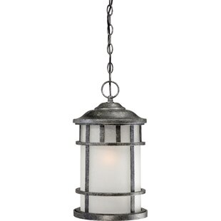 Top Reviews Hartnell 1-Light Outdoor Hanging Lantern By Breakwater Bay
