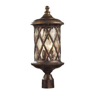 Whittington 2-Light Outdoor Lantern Head by Fleur De Lis Living